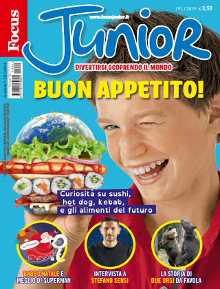 Focus Junior 2019-11-21