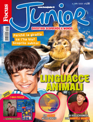 Focus Junior 2020-07-21