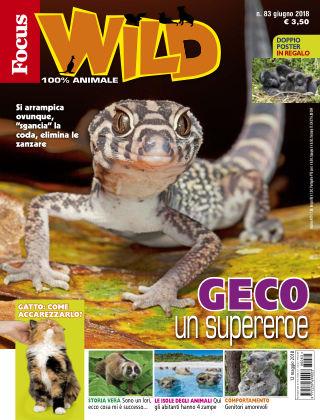 Focus Wild 2018-05-12