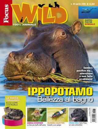 Focus Wild 2018-03-13