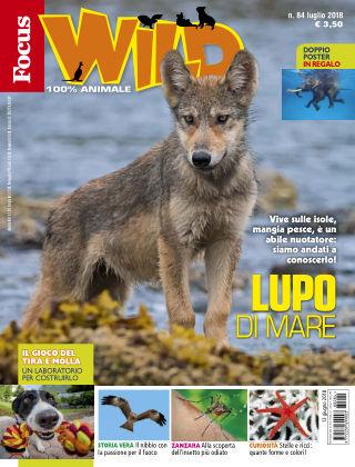 Focus Wild 2018-06-13