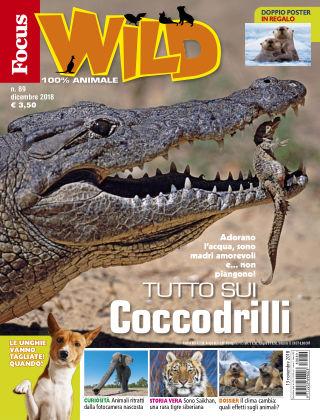 Focus Wild 2018-11-16