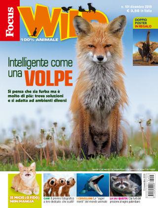 Focus Wild 2019-11-13