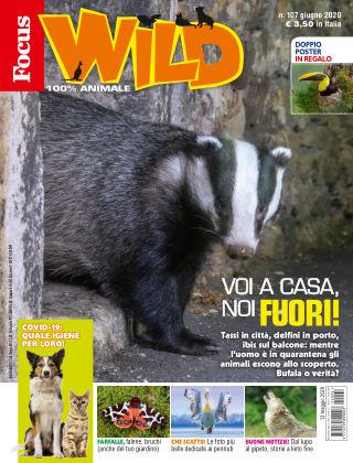 Focus Wild 2020-05-12