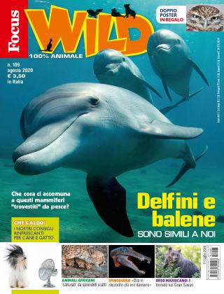 Focus Wild 2020-07-11