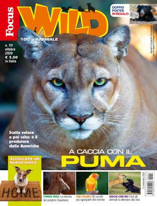 Focus Wild 2020-09-12
