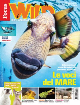 Focus Wild 2021-07-20