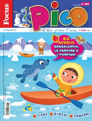Focus Pico Focus Pico 01/2021