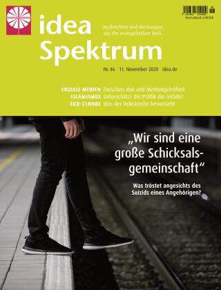 idea Spektrum 46/2020