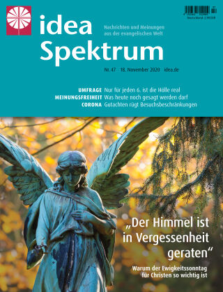 idea Spektrum 47/2020
