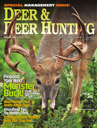 Deer & Deer Hunting Summer 2016