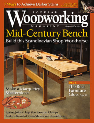 Popular Woodworking February 2017