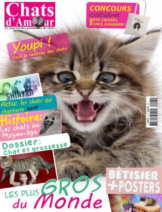 Cat of Love - Chats d'Amour novembre2017
