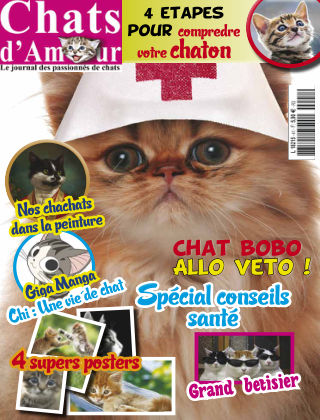 Cat of Love - Chats d'Amour septembre2017