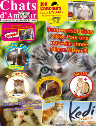 Cat of Love - Chats d'Amour February 2019