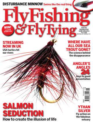 Fly Fishing and Fly Tying November 2020