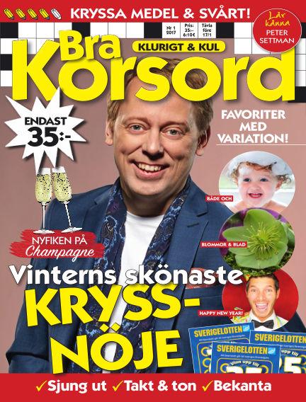 Bra Korsord December 20, 2016 00:00