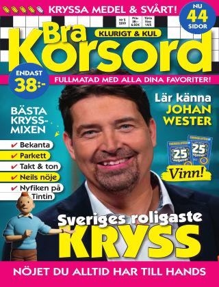Bra Korsord 19-05