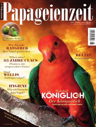 Papageienzeit Papageienzeit 48