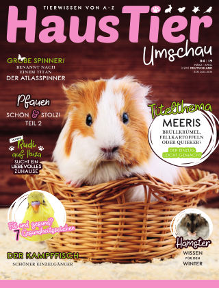 HausTier Umschau 4/19