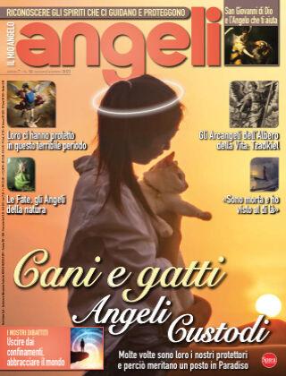 Angeli 34