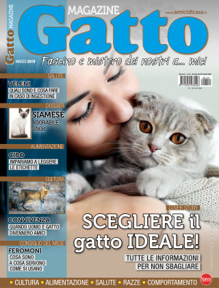 Gatto Magazine Marzo 2019
