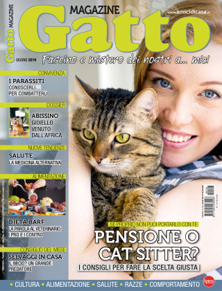 Gatto Magazine Giugno 2019