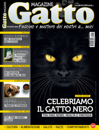 Gatto Magazine Novembre 2019