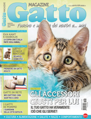Gatto Magazine 140