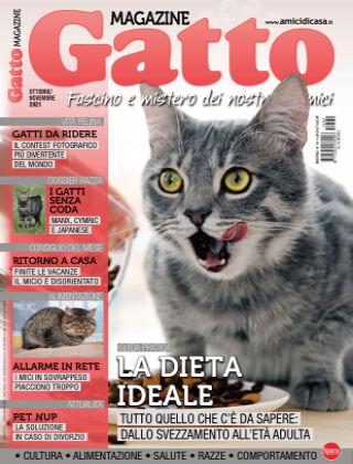 Gatto Magazine 141