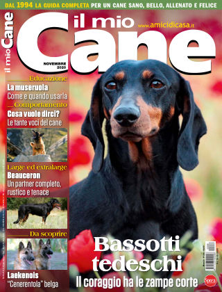 Il Mio Cane 286