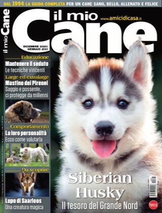 Il Mio Cane 287