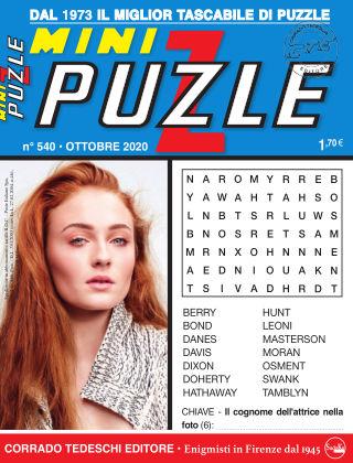 Mini Puzzle 540