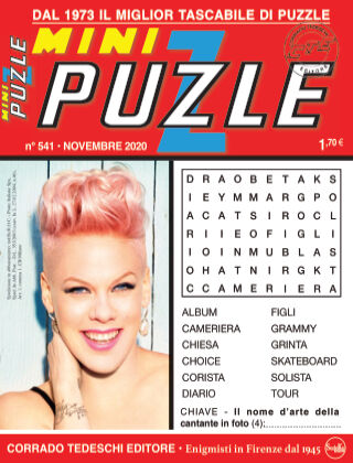 Mini Puzzle 541