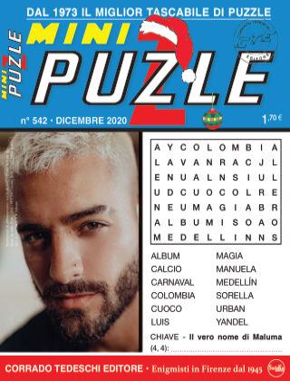 Mini Puzzle 542