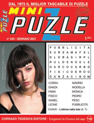 Mini Puzzle 543