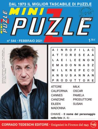Mini Puzzle 544