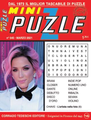 Mini Puzzle 545
