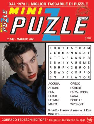 Mini Puzzle 547