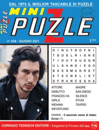 Mini Puzzle 548
