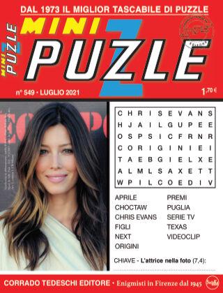 Mini Puzzle 549