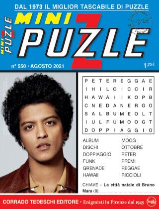Mini Puzzle 550