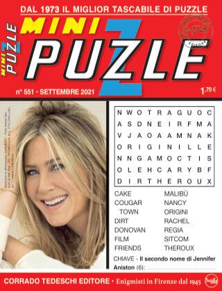 Mini Puzzle 551