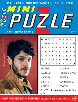 Mini Puzzle 552