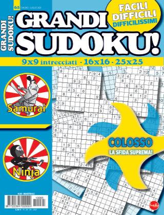 Grandi Sudoku 65