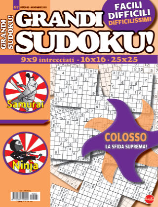 Grandi Sudoku 67