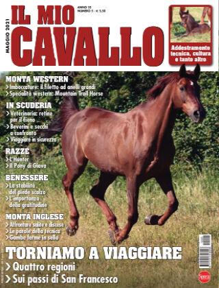 Il Mio Cavallo 05