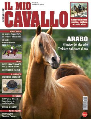 Il Mio Cavallo 06
