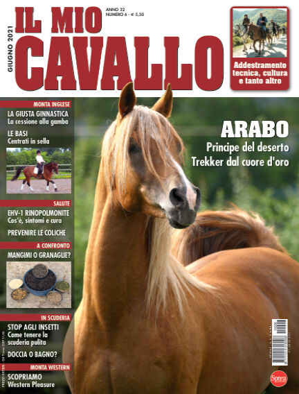 Il Mio Cavallo May 28, 2021 00:00