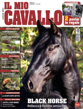 Il Mio Cavallo 07